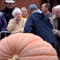 Pumpkin weigh off at Ottawa`s By Ward Market