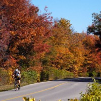 Cyclist in Gatineau Park on a colorful fall day