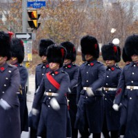 Honor Guards during Remembrance Day parade