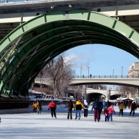 Skaters on the Rideau Canal near downtown bridges