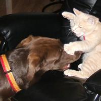 October 23, 2008 - Winzor, Kreamer